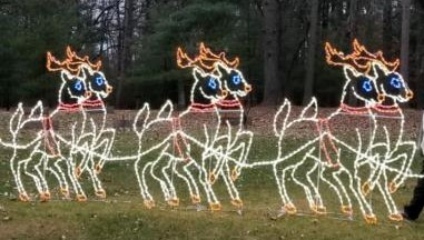 Three sets of reindeer are part of the light display in Staples, MN.